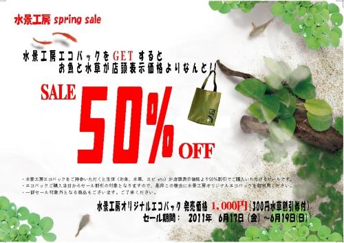 2011.6.sale_1.jpg