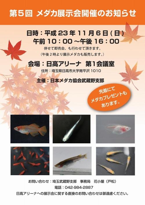 20111022_2260326.jpg