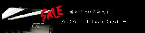 ADA.jpg