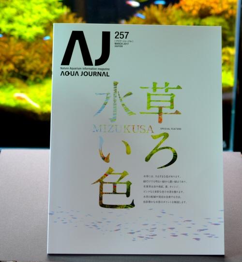 AJ-257.JPG