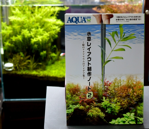 Make_a_Aquaticplants_layout_Note_2.JPG