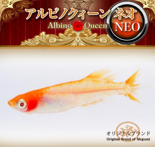 queen_neo.jpg